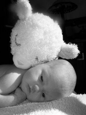 Sharyn had a little lamb